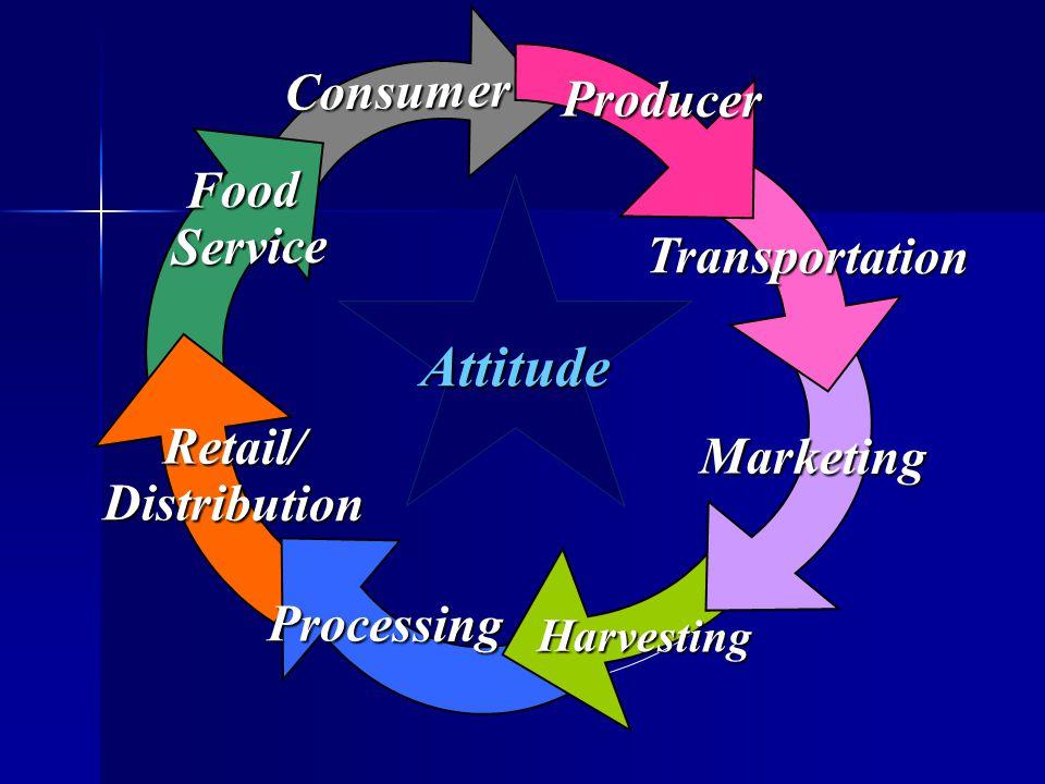 Consumer Food Service Service Retail/Distribution Processing Harvesting Marketing Transportation Producer Attitude