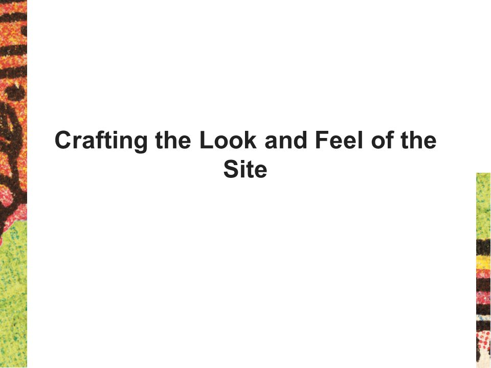 Crafting the Look and Feel of the Site
