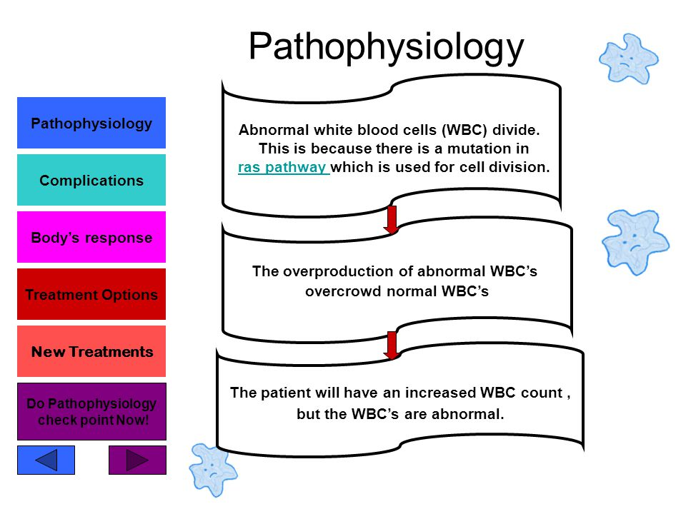 Pathophysiology Complications Body's response Treatment Options New Treatments Pathophysiology The overproduction of abnormal WBC's overcrowd normal WBC's Abnormal white blood cells (WBC) divide.