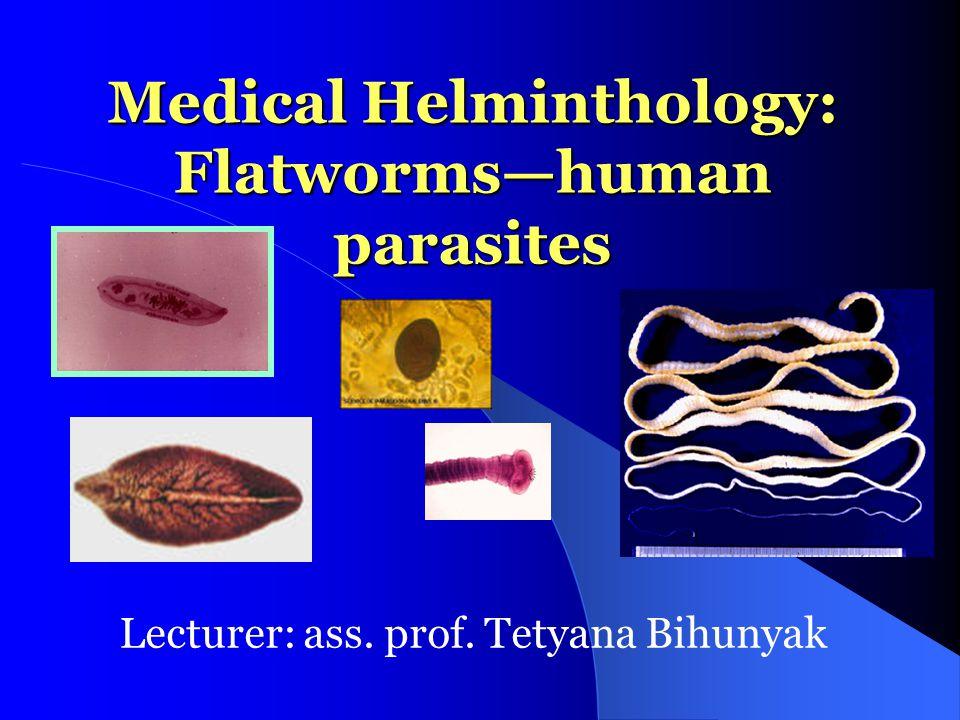 Medical Helminthology: Flatworms—human parasites Lecturer: ass. prof. Tetyana Bihunyak