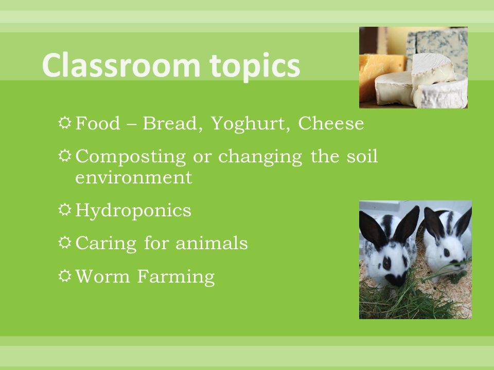  Food – Bread, Yoghurt, Cheese  Composting or changing the soil environment  Hydroponics  Caring for animals  Worm Farming