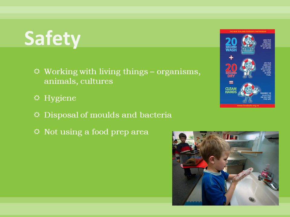  Working with living things – organisms, animals, cultures  Hygiene  Disposal of moulds and bacteria  Not using a food prep area