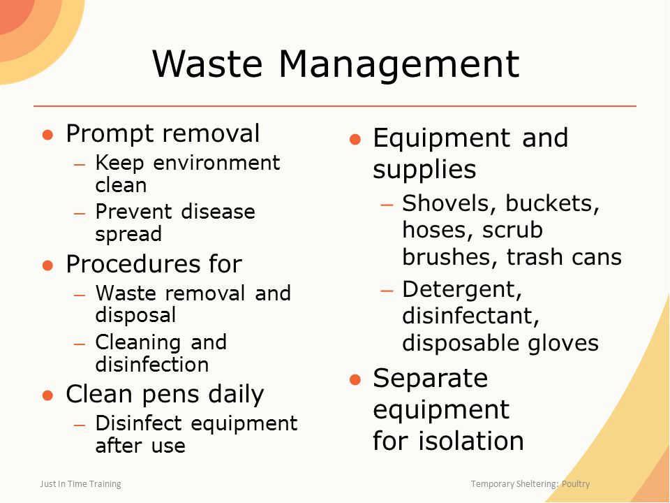 Waste Management ●Prompt removal – Keep environment clean – Prevent disease spread ●Procedures for – Waste removal and disposal – Cleaning and disinfection ●Clean pens daily – Disinfect equipment after use ● Equipment and supplies – Shovels, buckets, hoses, scrub brushes, trash cans – Detergent, disinfectant, disposable gloves ● Separate equipment for isolation Just In Time Training Temporary Sheltering: Poultry