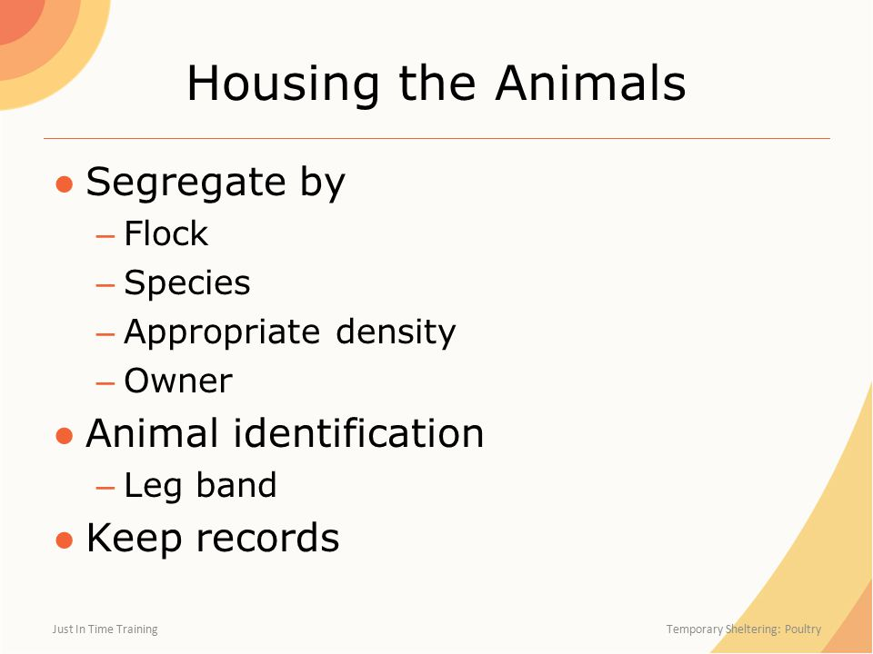 Housing the Animals ●Segregate by – Flock – Species – Appropriate density – Owner ●Animal identification – Leg band ●Keep records Just In Time Trainin