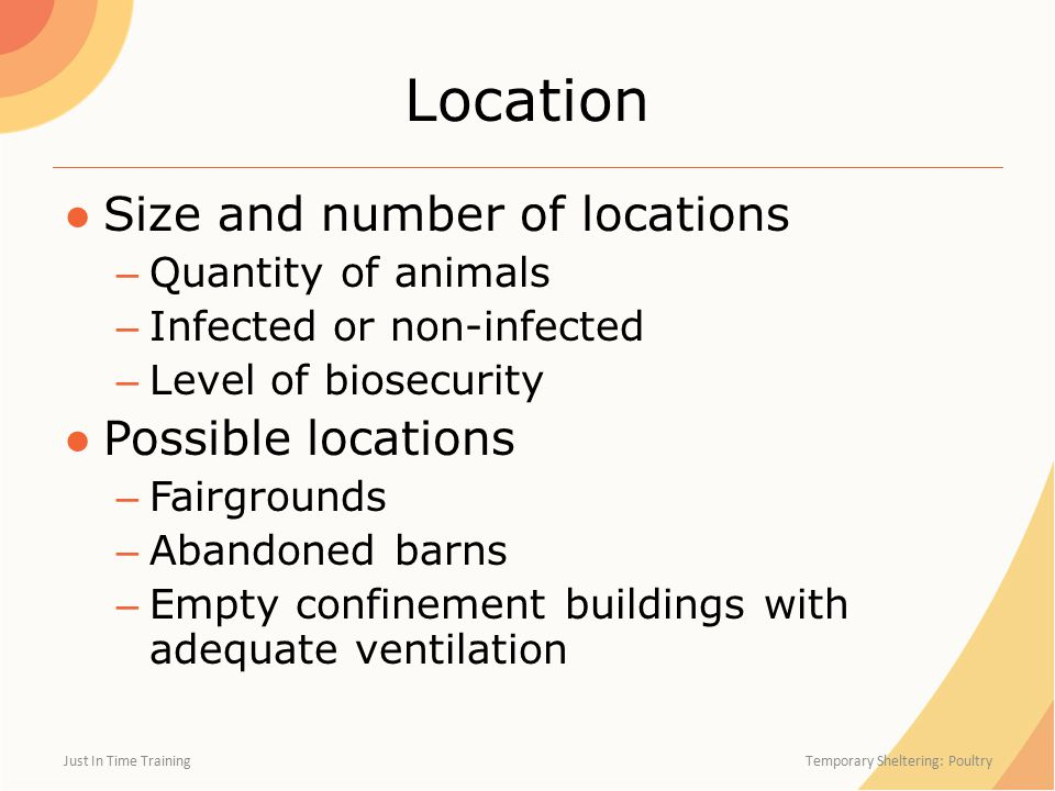 Location ●Size and number of locations – Quantity of animals – Infected or non-infected – Level of biosecurity ●Possible locations – Fairgrounds – Abandoned barns – Empty confinement buildings with adequate ventilation Just In Time Training Temporary Sheltering: Poultry