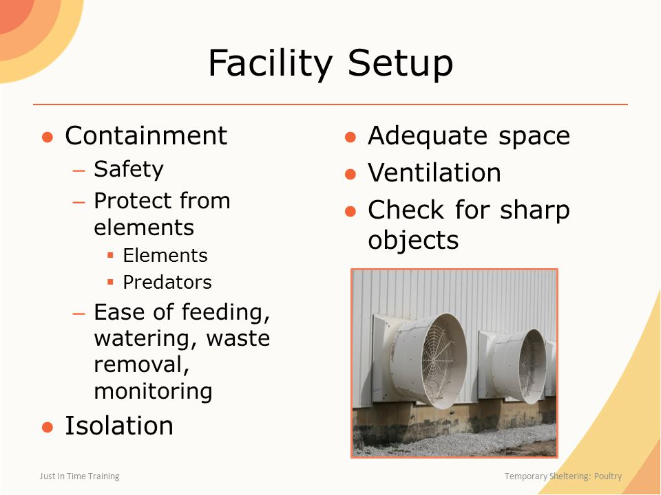 Facility Setup ●Containment – Safety – Protect from elements  Elements  Predators – Ease of feeding, watering, waste removal, monitoring ●Isolation ● Adequate space ● Ventilation ● Check for sharp objects Just In Time Training Temporary Sheltering: Poultry