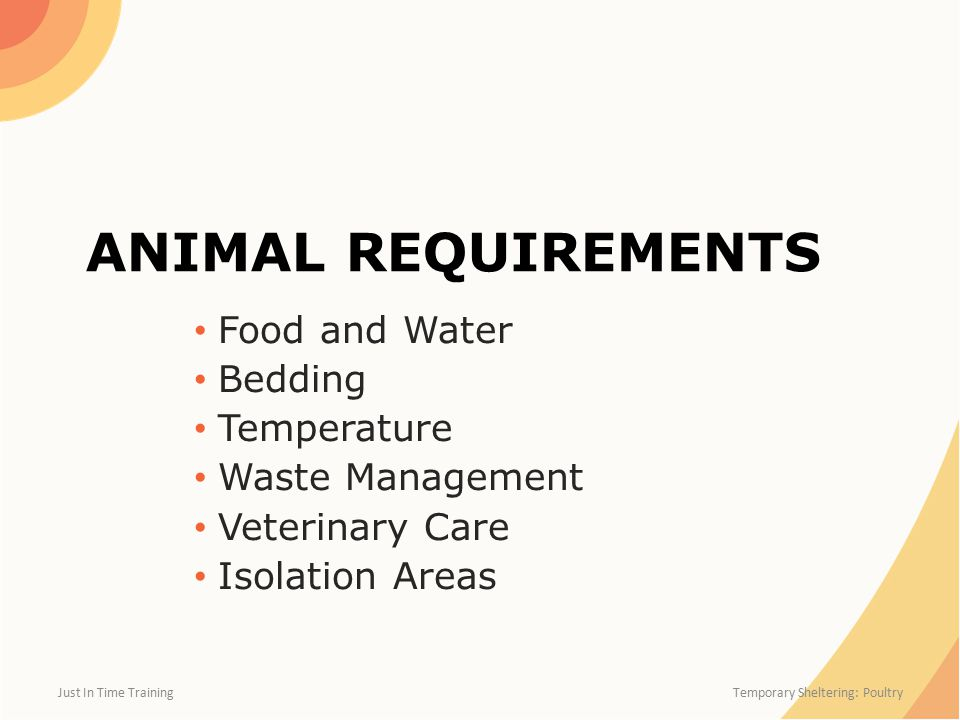 ANIMAL REQUIREMENTS Food and Water Bedding Temperature Waste Management Veterinary Care Isolation Areas Just In Time Training Temporary Sheltering: Poultry