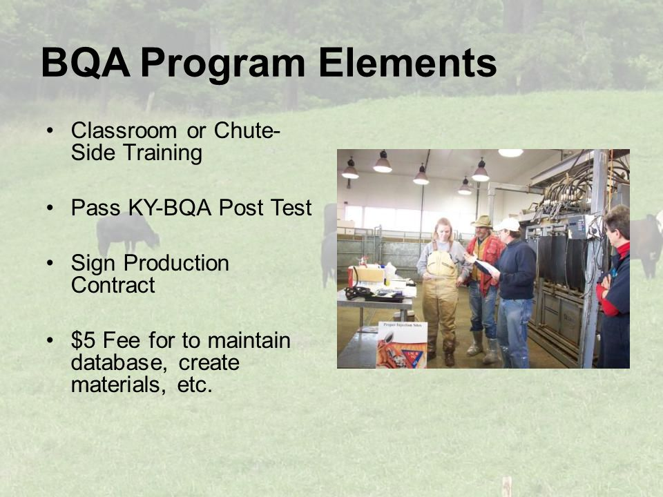 BQA Program Elements Classroom or Chute- Side Training Pass KY-BQA Post Test Sign Production Contract $5 Fee for to maintain database, create materials, etc.