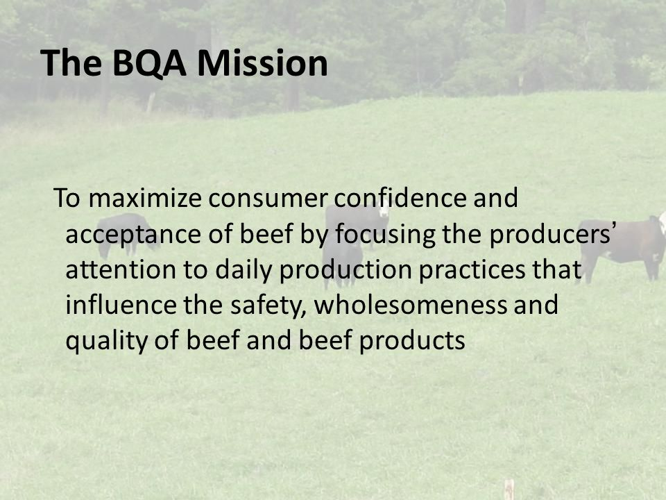 The BQA Mission To maximize consumer confidence and acceptance of beef by focusing the producers' attention to daily production practices that influence the safety, wholesomeness and quality of beef and beef products