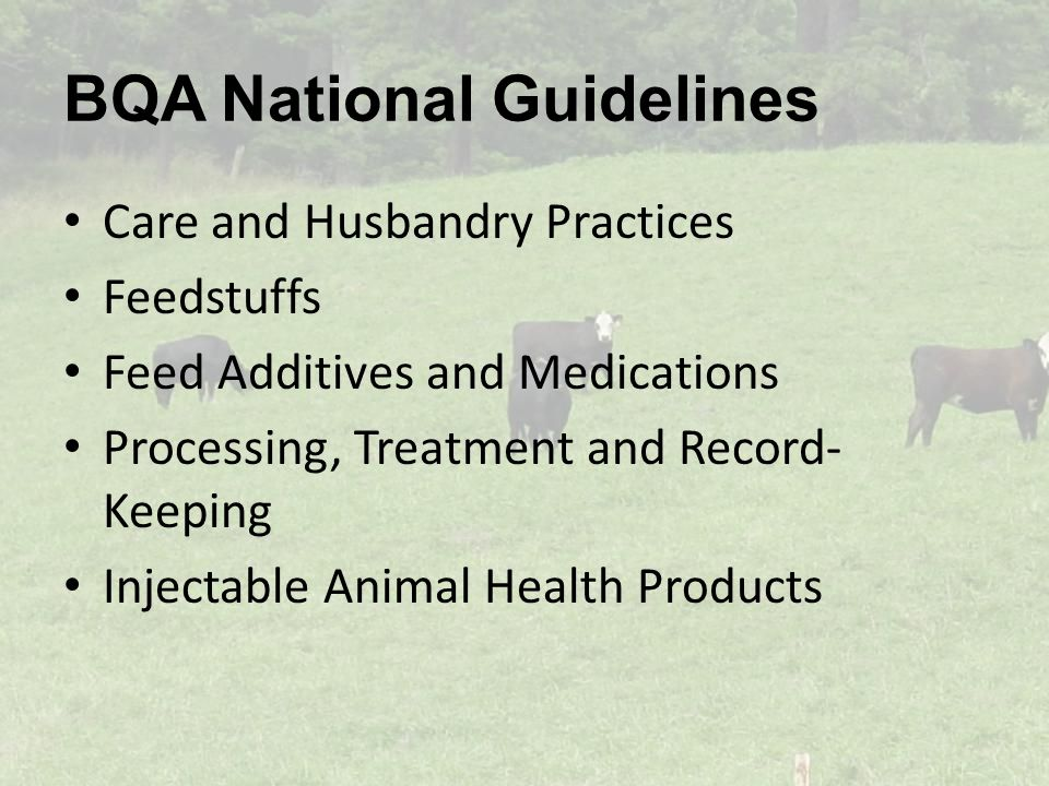 BQA National Guidelines Care and Husbandry Practices Feedstuffs Feed Additives and Medications Processing, Treatment and Record- Keeping Injectable Animal Health Products