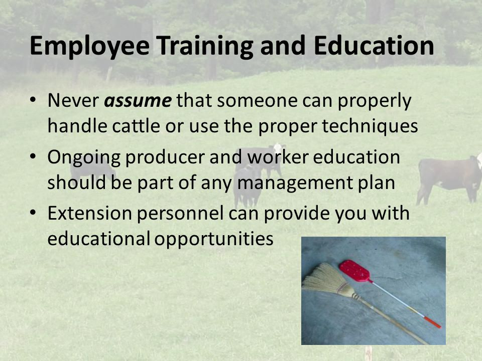 Employee Training and Education Never assume that someone can properly handle cattle or use the proper techniques Ongoing producer and worker education should be part of any management plan Extension personnel can provide you with educational opportunities