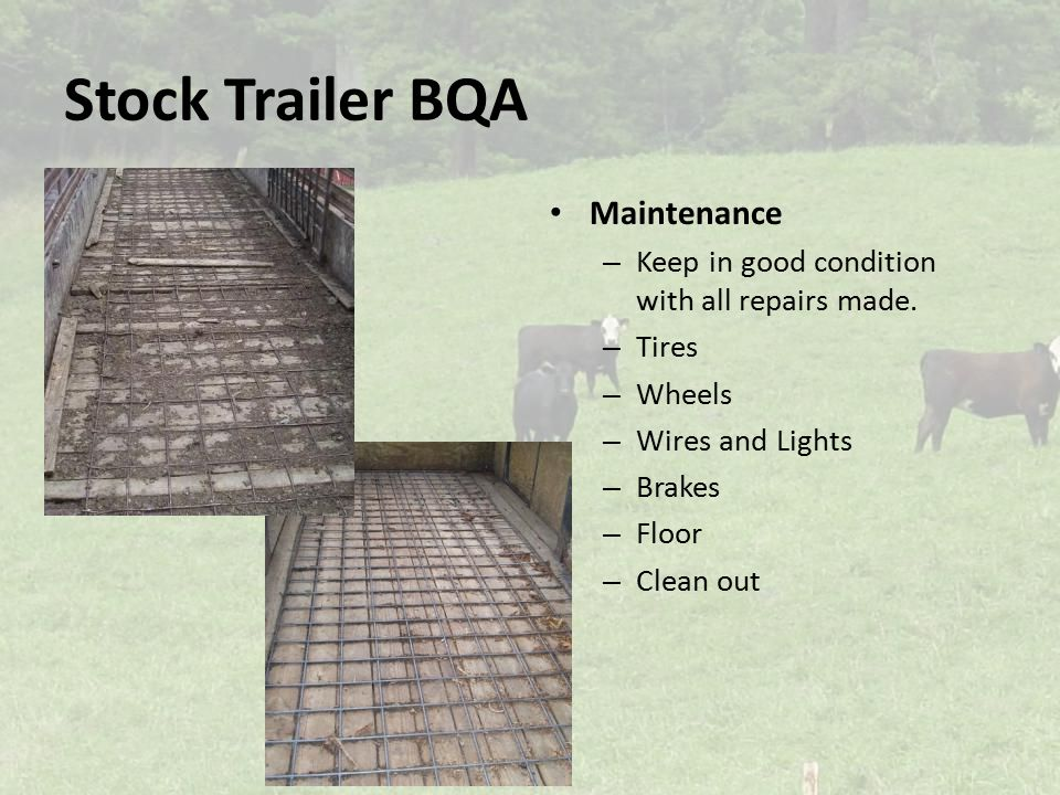 Stock Trailer BQA Maintenance – Keep in good condition with all repairs made.