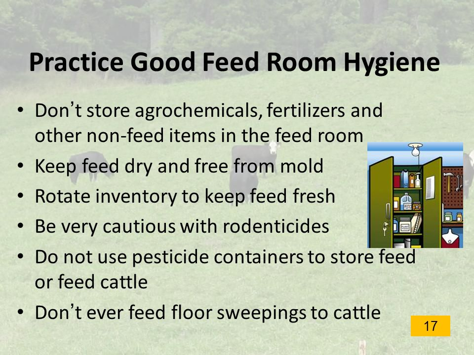 Practice Good Feed Room Hygiene Don't store agrochemicals, fertilizers and other non-feed items in the feed room Keep feed dry and free from mold Rotate inventory to keep feed fresh Be very cautious with rodenticides Do not use pesticide containers to store feed or feed cattle Don't ever feed floor sweepings to cattle 17