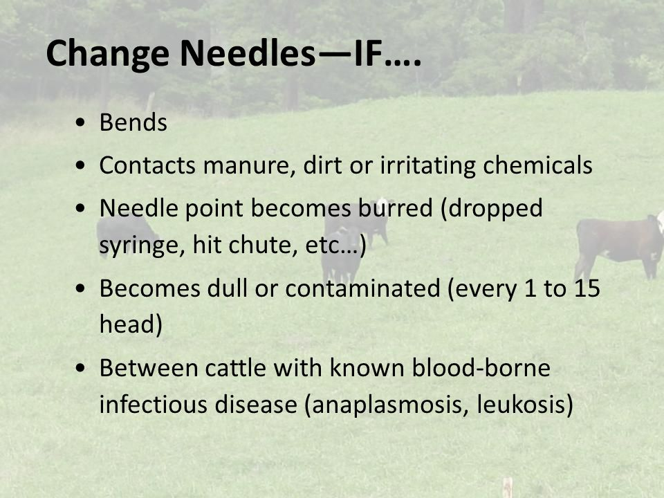 Change Needles—IF….