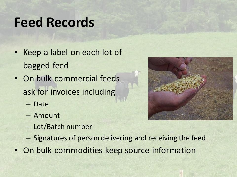 Feed Records Keep a label on each lot of bagged feed On bulk commercial feeds ask for invoices including – Date – Amount – Lot/Batch number – Signatures of person delivering and receiving the feed On bulk commodities keep source information