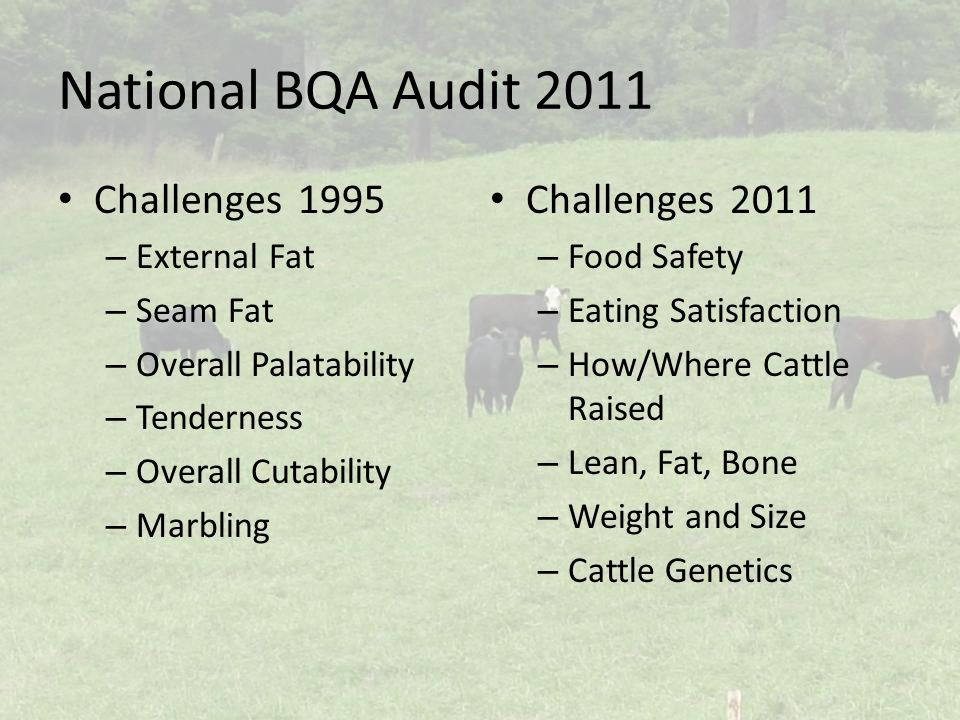 National BQA Audit 2011 Challenges1995 – External Fat – Seam Fat – Overall Palatability – Tenderness – Overall Cutability – Marbling Challenges2011 – Food Safety – Eating Satisfaction – How/Where Cattle Raised – Lean, Fat, Bone – Weight and Size – Cattle Genetics