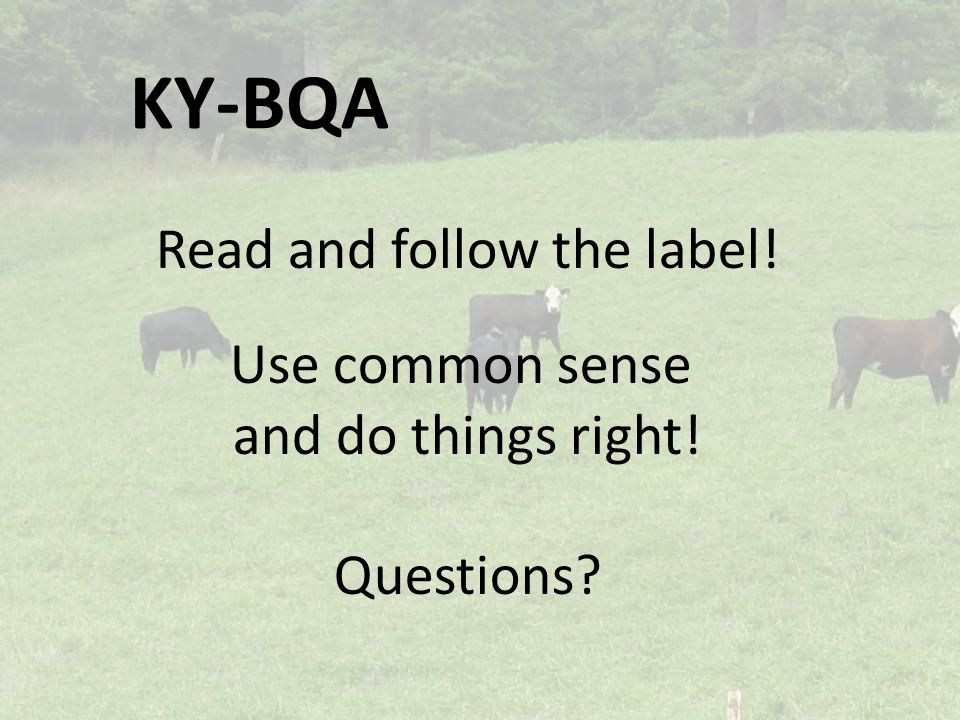 KY-BQA Read and follow the label! Use common sense and do things right! Questions?