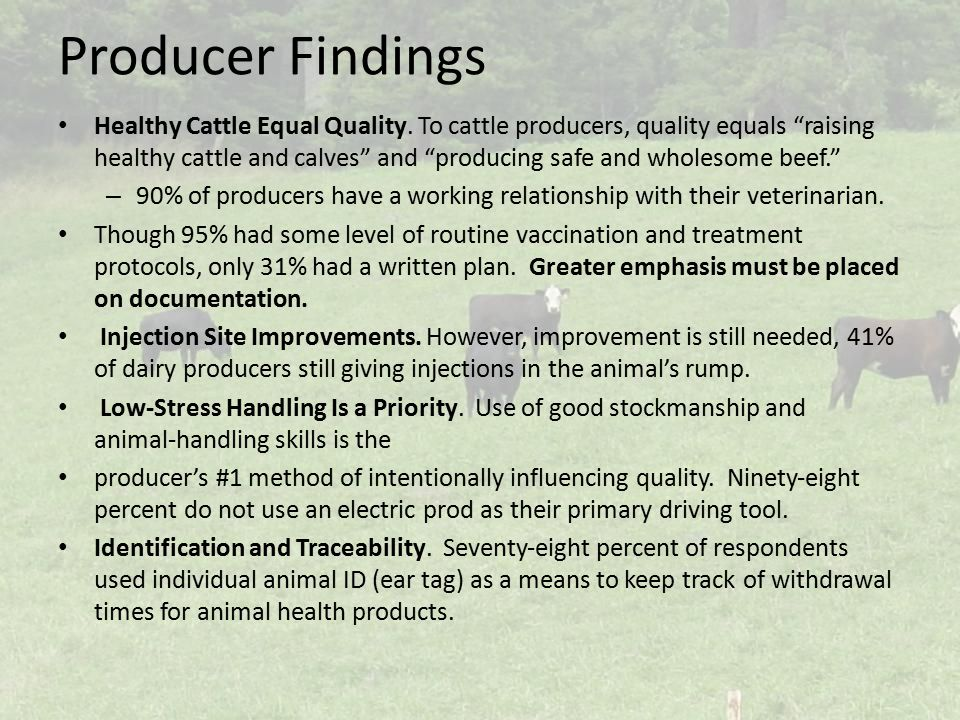 Producer Findings Healthy Cattle Equal Quality.