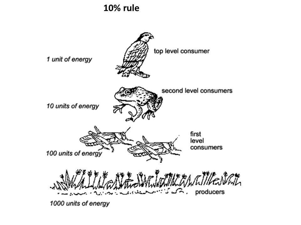 10% rule