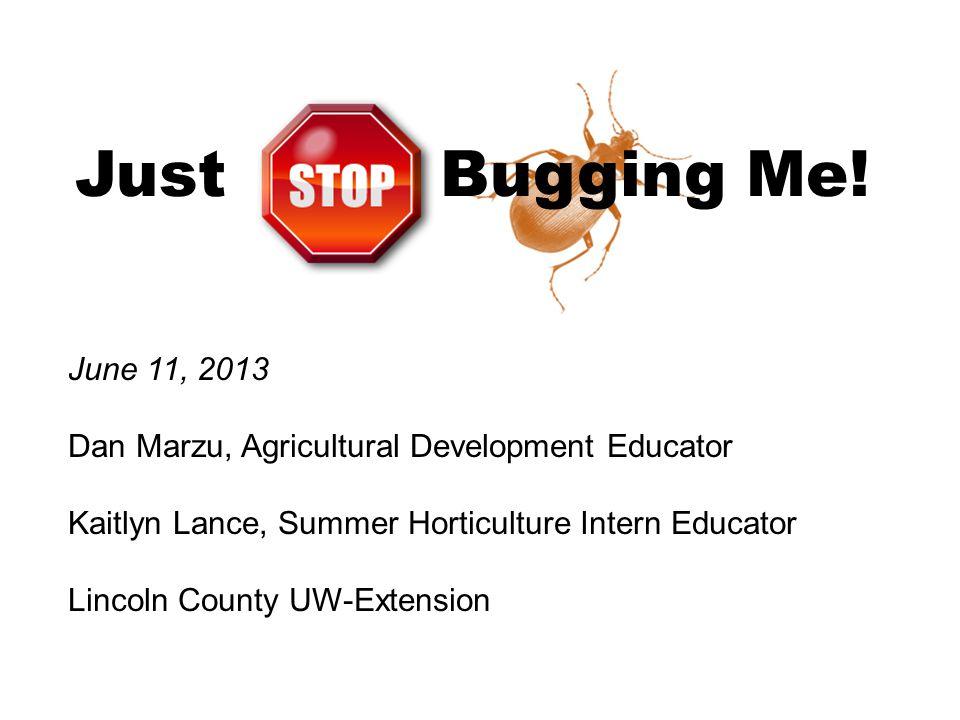 Just Bugging Me! June 11, 2013 Dan Marzu, Agricultural Development Educator Kaitlyn Lance, Summer Horticulture Intern Educator Lincoln County UW-Exten