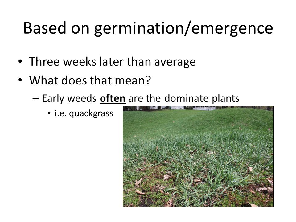 Based on germination/emergence Three weeks later than average What does that mean.