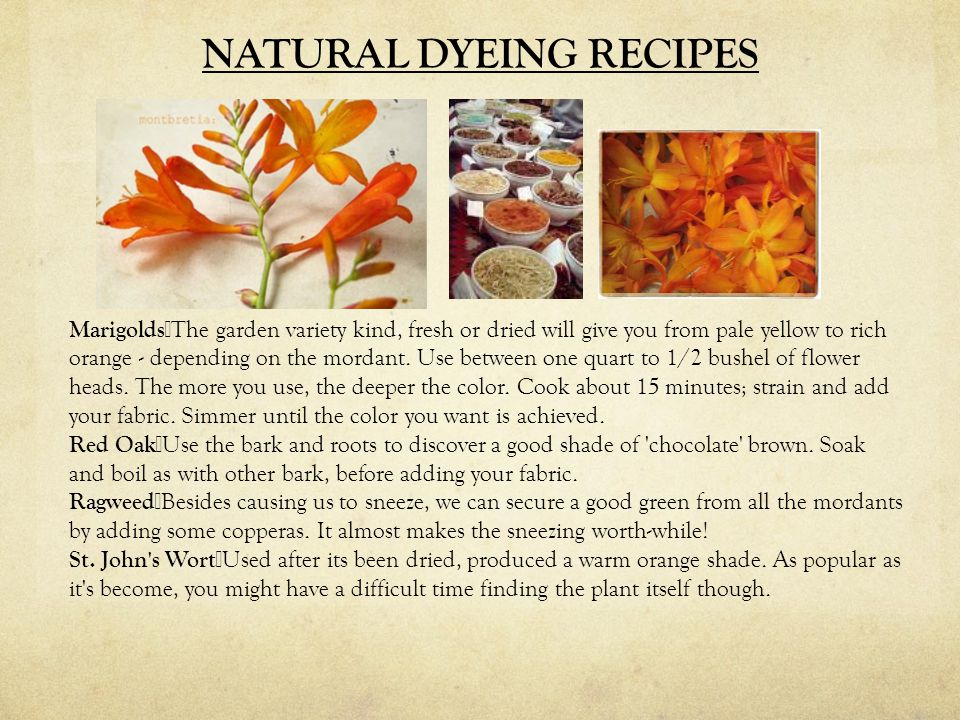 NATURAL DYEING RECIPES Marigolds The garden variety kind, fresh or dried will give you from pale yellow to rich orange - depending on the mordant.