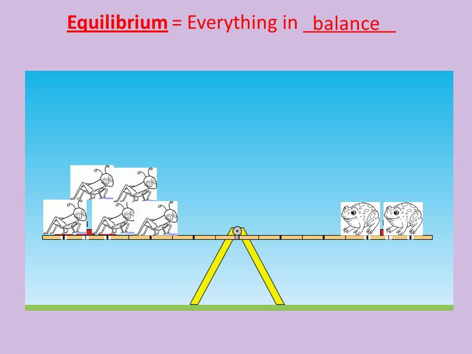Equilibrium = Everything in _________ balance