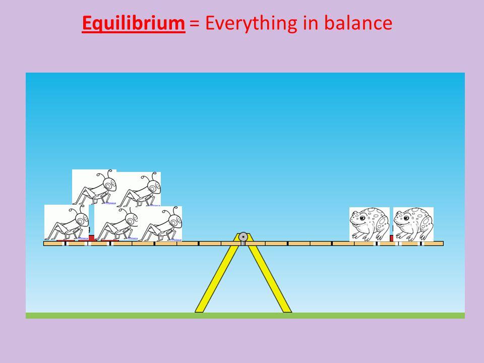 Equilibrium = Everything in balance