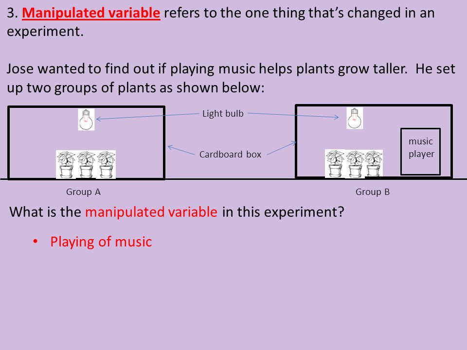 3. Manipulated variable refers to the one thing that's changed in an experiment. Jose wanted to find out if playing music helps plants grow taller. He