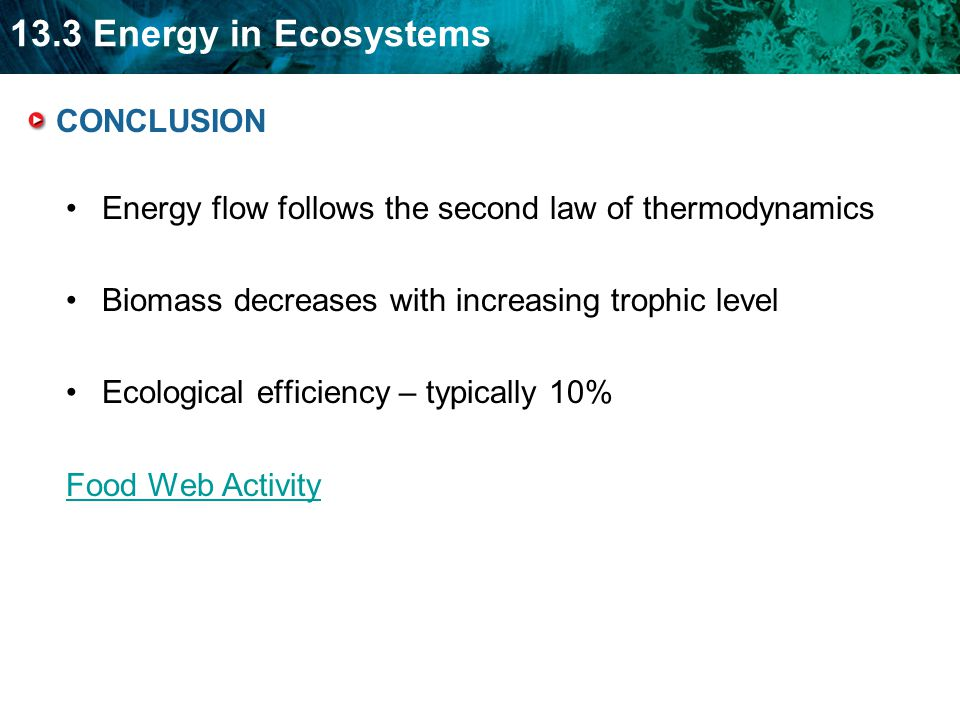 13.3 Energy in Ecosystems CONCLUSION Energy flow follows the second law of thermodynamics Biomass decreases with increasing trophic level Ecological efficiency – typically 10% Food Web Activity