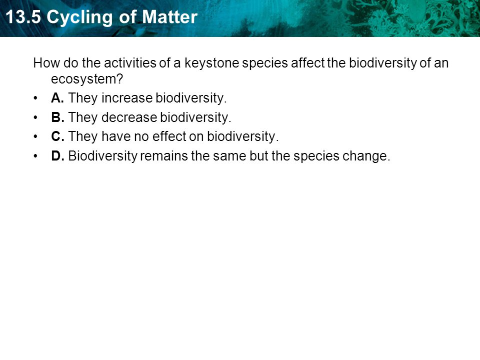 13.5 Cycling of Matter How do the activities of a keystone species affect the biodiversity of an ecosystem.