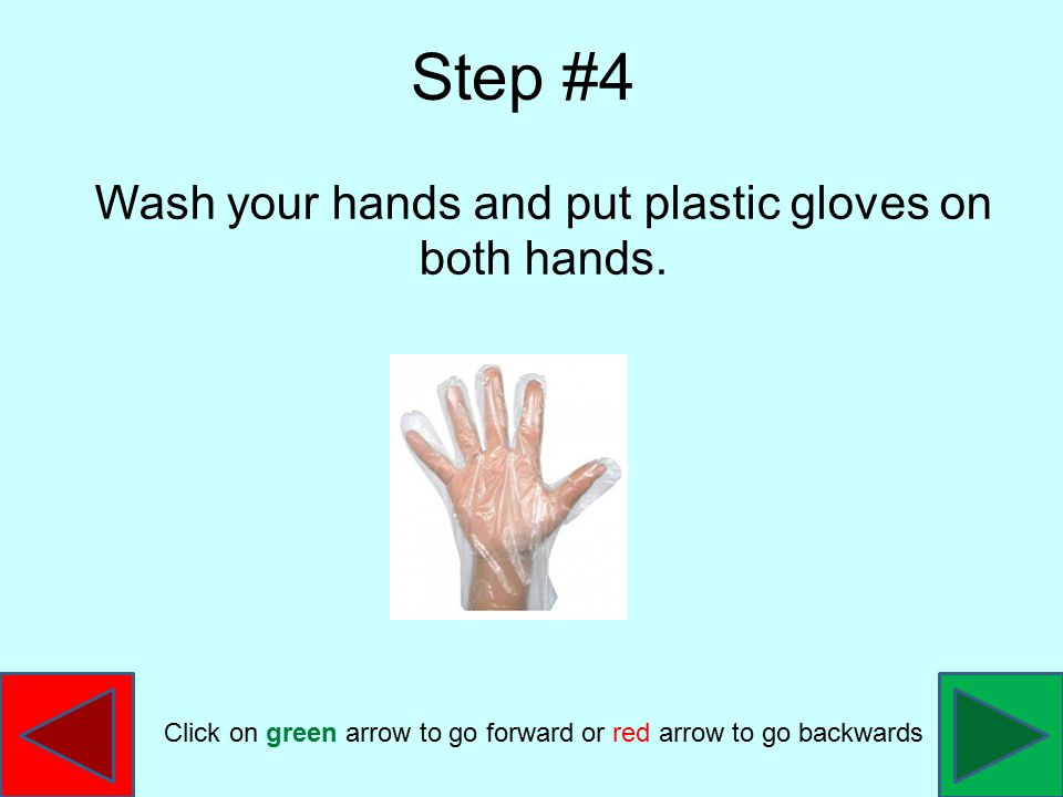 Wash your hands and put plastic gloves on both hands. Step #4 Click on green arrow to go forward or red arrow to go backwards