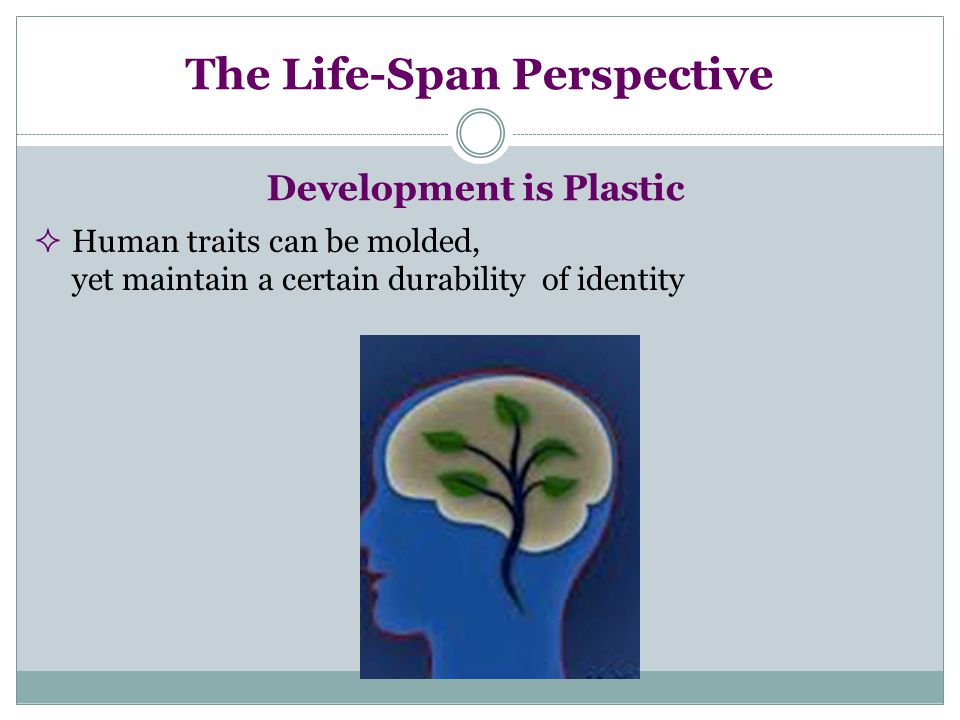 The Life-Span Perspective Development is Plastic  Human traits can be molded, yet maintain a certain durability of identity