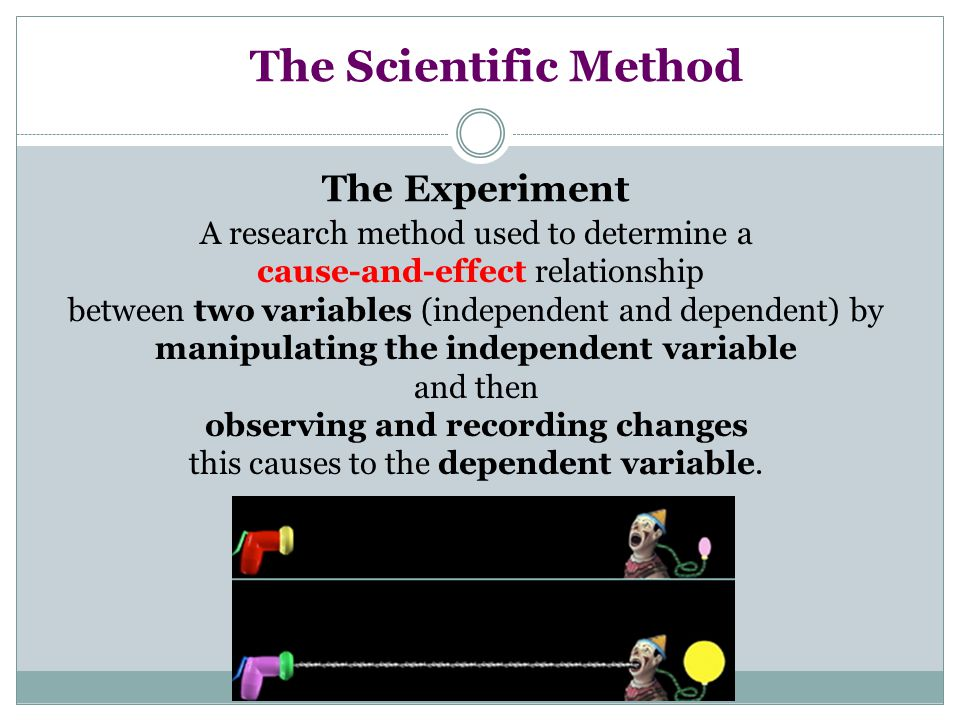 The Scientific Method The Experiment A research method used to determine a cause-and-effect relationship between two variables (independent and depend