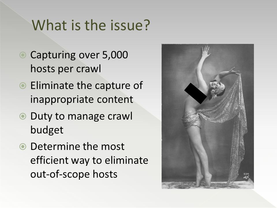 Capturing over 5,000 hosts per crawl  Eliminate the capture of inappropriate content  Duty to manage crawl budget  Determine the most efficient way to eliminate out-of-scope hosts What is the issue?