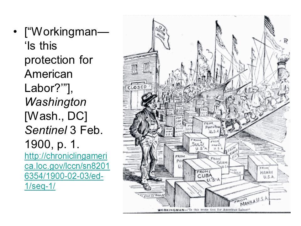 [ Workingman— 'Is this protection for American Labor?' ], Washington [Wash., DC] Sentinel 3 Feb.