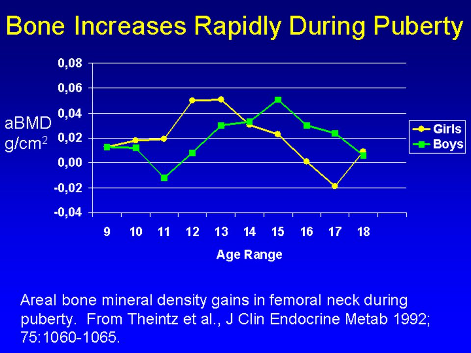 Areal bone mineral density gains in femoral neck during puberty.