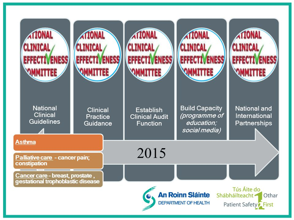 National Clinical Guidelines Clinical Practice Guidance Establish Clinical Audit Function Build Capacity (programme of education; social media) National and International Partnerships 2015 Asthma Palliative care - cancer pain; constipation Cancer care – breast, prostate, gestational trophoblastic disease