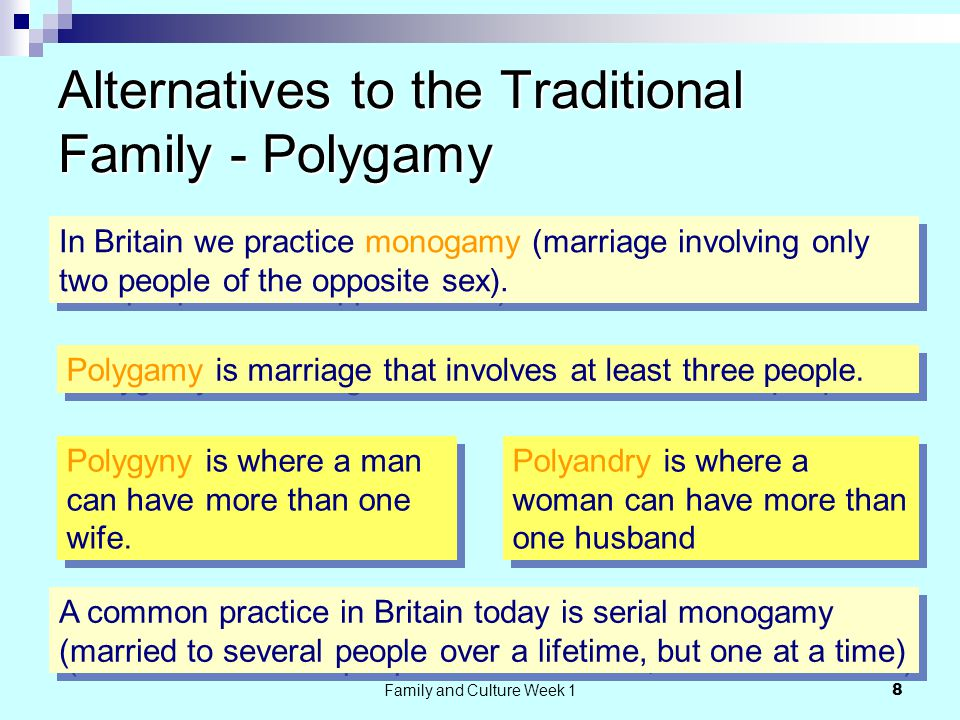 Family and Culture Week 1 8 Alternatives to the Traditional Family - Polygamy In Britain we practice monogamy (marriage involving only two people of the opposite sex).