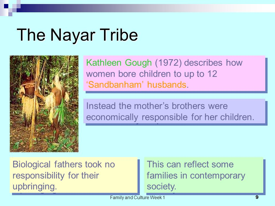 Family and Culture Week 1 9 The Nayar Tribe Kathleen Gough (1972) describes how women bore children to up to 12 'Sandbanham' husbands.