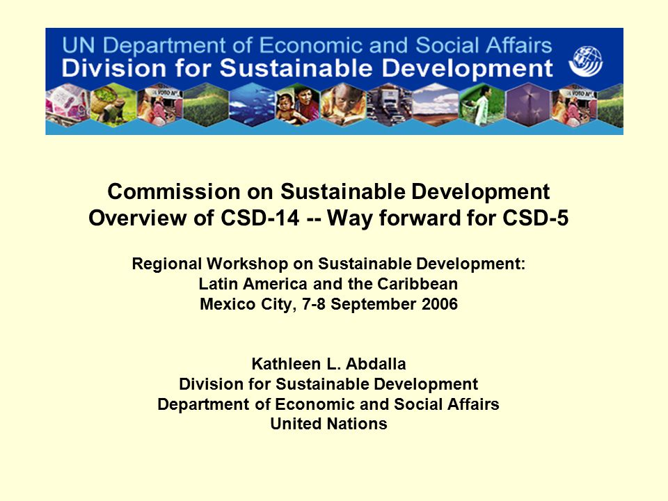 Rio Conference on Environment and Development 1992 – Agenda 21 Millennium Summit 2000 9 th Session of the Commission on Sustainable Development 2001 World Summit on Sustainable Development, Johannesburg, 2002 World Summit 2005 CSD14 2006 / CSD15 2007