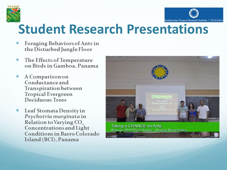 Student Research Presentations Foraging Behaviors of Ants in the Disturbed Jungle Floor The Effects of Temperature on Birds in Gamboa, Panama A Comparison on Conductance and Transpiration between Tropical Evergreen Deciduous Trees Leaf Stomata Density in Psychotria marginata in Relation to Varying CO 2 Concentrations and Light Conditions in Barro Colorado Island (BCI), Panama