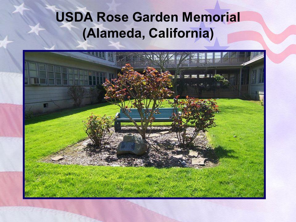 USDA American Linden Tree Plaque (Washington, D.C.)