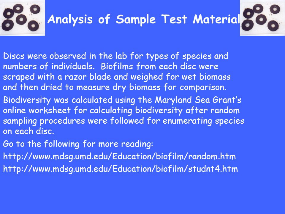 Analysis of Sample Test Material Discs were observed in the lab for types of species and numbers of individuals. Biofilms from each disc were scraped