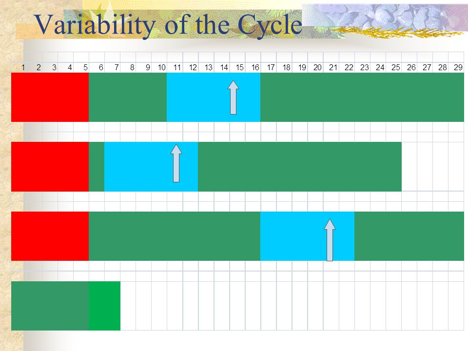 Variability of the Cycle