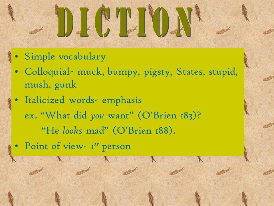 Simple vocabulary Colloquial- muck, bumpy, pigsty, States, stupid, mush, gunk Italicized words- emphasis ex.