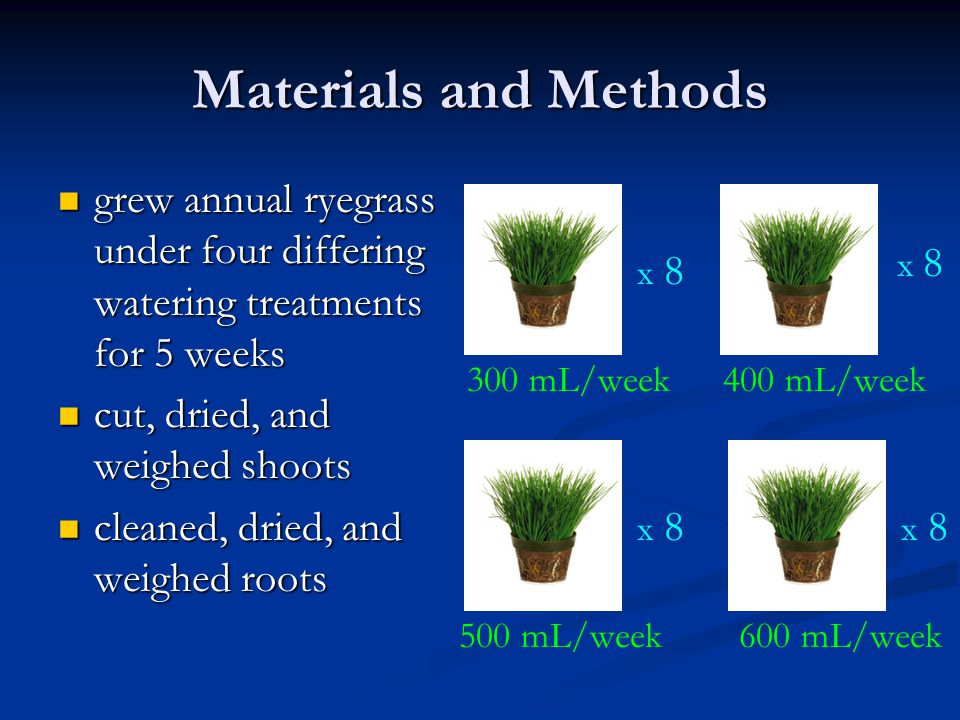 Materials and Methods grew annual ryegrass under four differing watering treatments for 5 weeks grew annual ryegrass under four differing watering tre