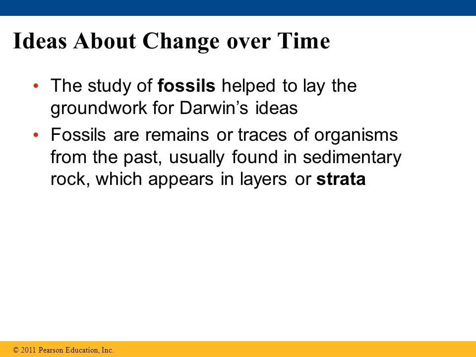 Ideas About Change over Time The study of fossils helped to lay the groundwork for Darwin's ideas Fossils are remains or traces of organisms from the