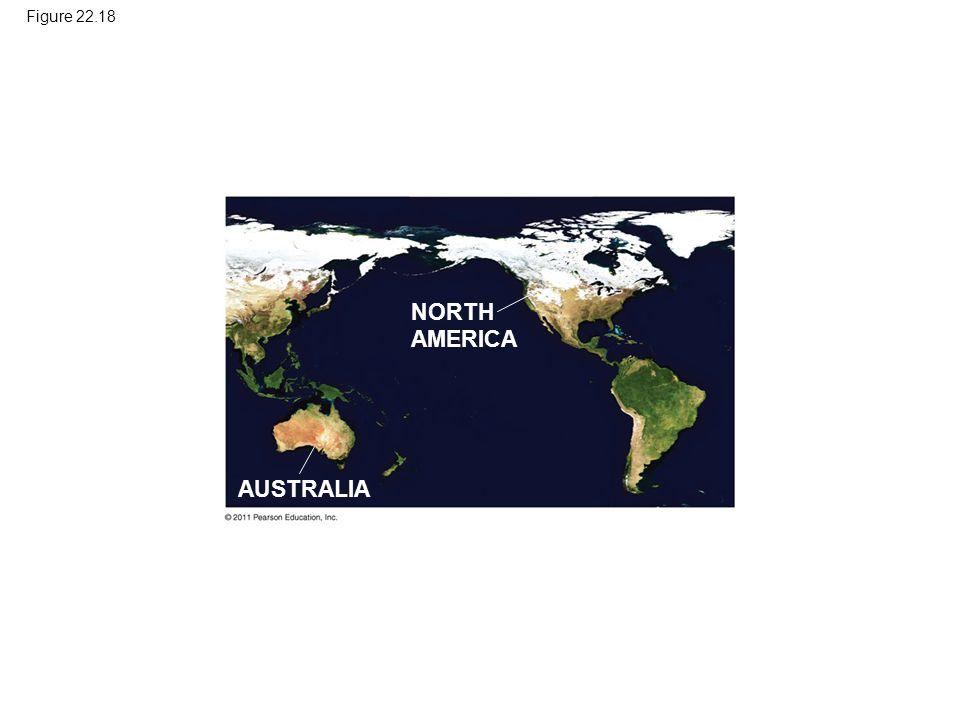 Figure 22.18 NORTH AMERICA AUSTRALIA