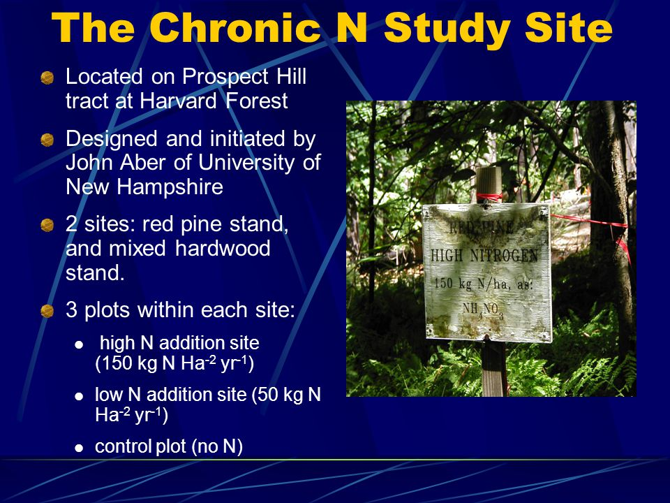 The Chronic N Study Site Located on Prospect Hill tract at Harvard Forest Designed and initiated by John Aber of University of New Hampshire 2 sites: red pine stand, and mixed hardwood stand.